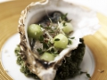 _004oesters-1